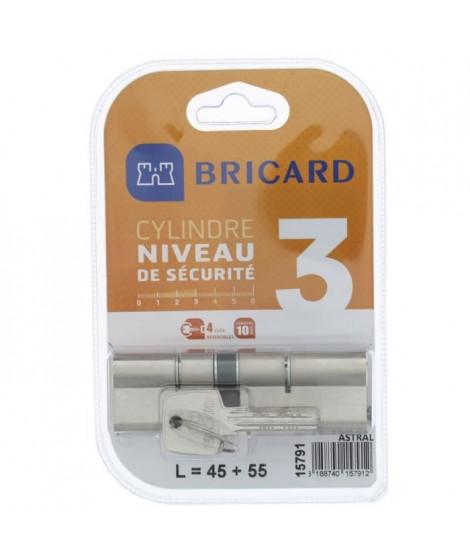 BRICARD ASTRAL 15791 Cylindre 45+55 double entrée laiton nickelé niveau de sécurité 3