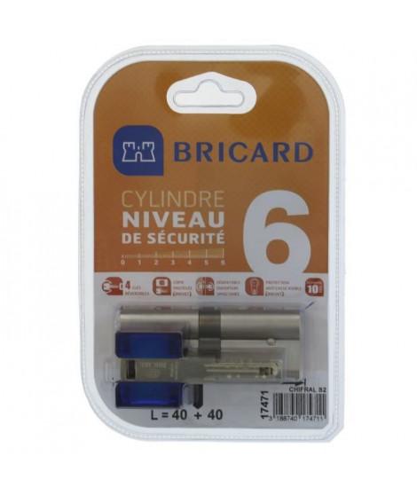 BRICARD CHIFRAL S2 17471 Cylindre 40+40 mm double entrée nickelé niveau de sécurité 6