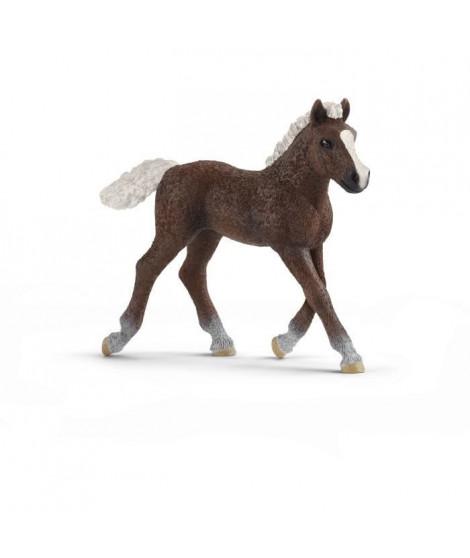 SCHLEICH - Figurine Poulain Foret Noire