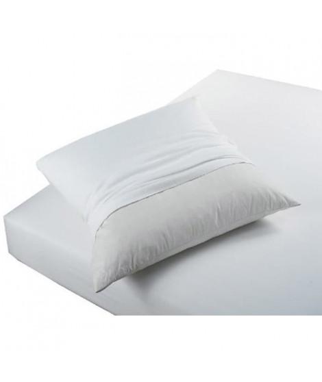 TODAY Protege Oreiller Absorbant Anti-Acariens 50x70cm - 100% Coton