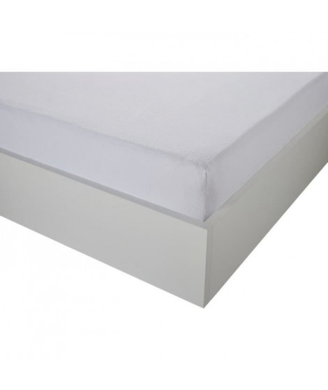 TODAY Protege Matelas / Alese Absorbant Anti-Acariens 140x190/200cm - 100% Coton