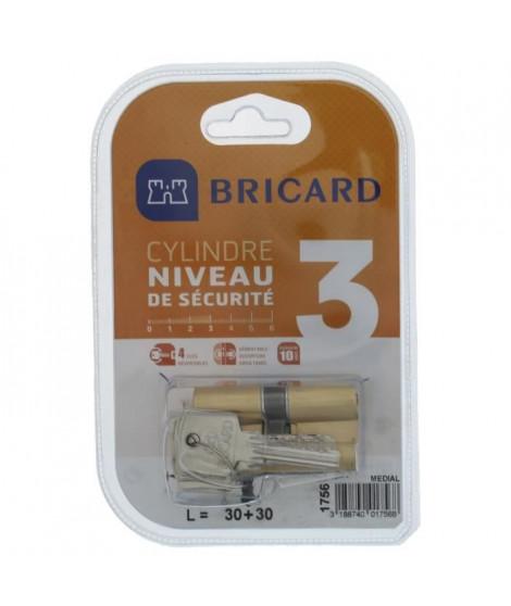 BRICARD MEDIAL 1756 Cylindre 30+30 mm double entrée laiton jaune niveau de sécurité 3