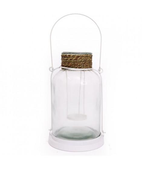 Lanterne Sealife W/Seagras - 30 cm
