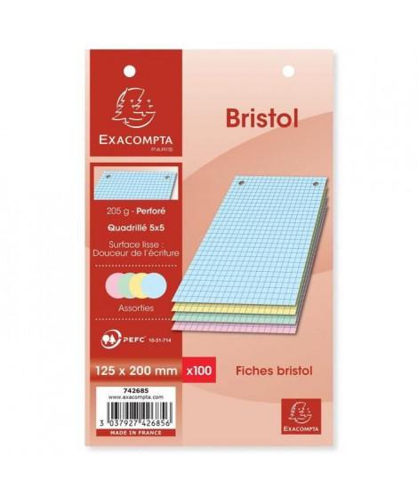 EXACOMPTA - 100 Fiches Bristol Couleurs - 4 coloris assortis - Perforées - 12,5 x 20 - 5x5 - Papier P.E.F.C 205G