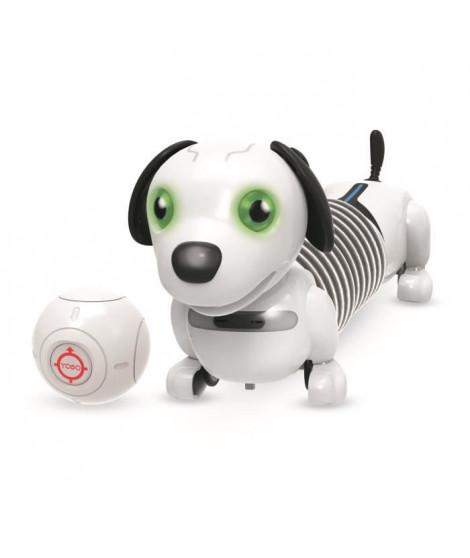 YCOO by Silverlit Junior Robo Dackel - 88578 - 25 cm - Chien extensible autonome qui te suit