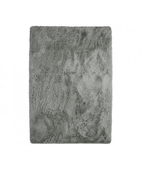 NEO YOGA Tapis de salon ou chambre - Microfibre extra doux - 120x170 cm - Gris clair