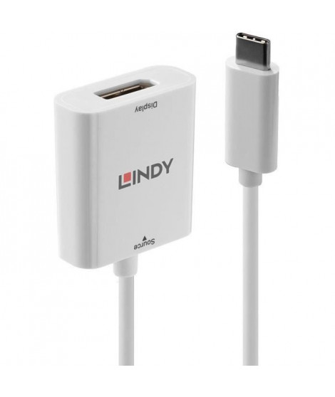 LINDY Convertisseur USB 3.1 type C vers DP